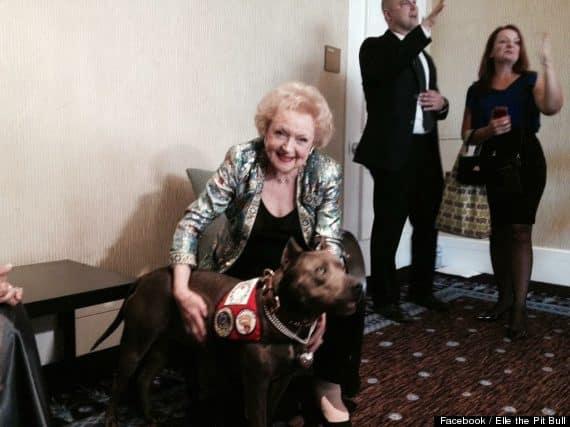 Betty White and Elle at 2013 AHA Hero Dog Awards