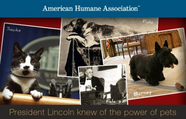 Celebrate President's Day With Your Pet?