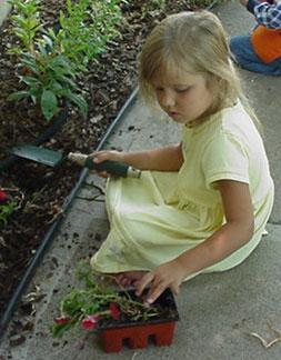 Adding a Greenhouse: Teaching Grandchildren Lessons Through Gardening
