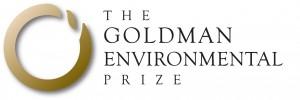 goldman environment award