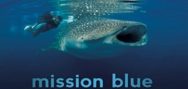 Check out Blue – Ocean Film Festival & Conservation Summit
