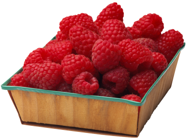 Yummy Brain Berry Recipes