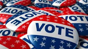 Don't Get Out The Vote!  Can Apathy Be Patriotic?