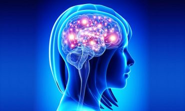A Single Concussion May Increase Risk of Parkinson's Disease