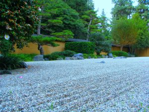 Zen gardens feature pebbles rather than much planting