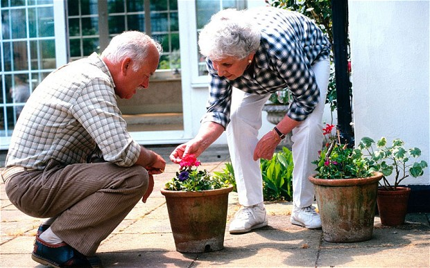 Tips For Grandparents Who Garden