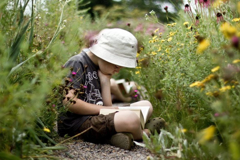 child reading in flowers