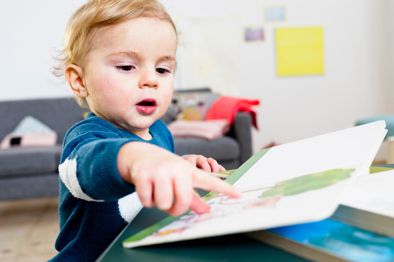 New Board Books for Bored Preschool Grands