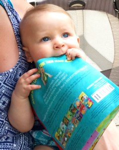 Indestructibles – baby books to sink your teeth into!